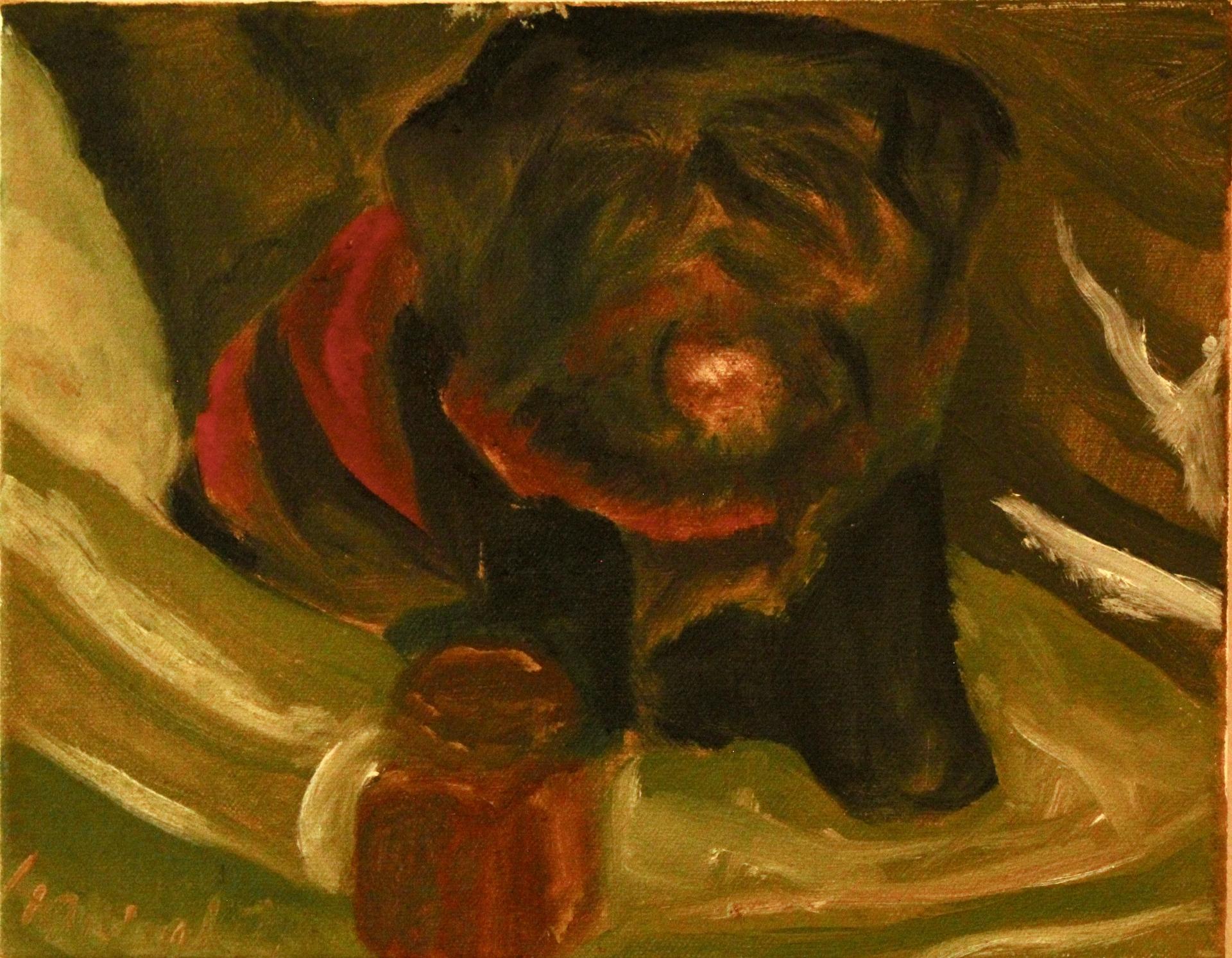 Hannah Thomasson, Dog 7