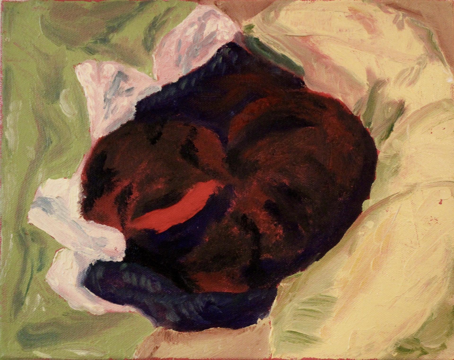 Hannah Thomasson, Dog 1