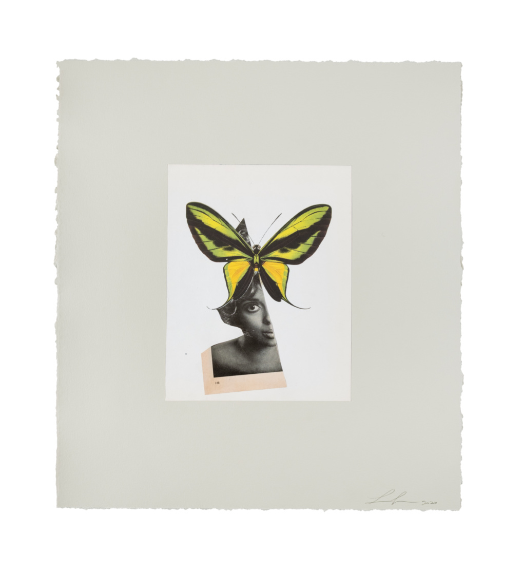 Lorna Simpson's Queen Butterfly, 2020. A collage on paper framed: 20 13/16 x 18 7/8 in. (52.9 x 47.9 cm).  Donating to Until Freedom. © Lorna Simpson. Courtesy the artist and Hauser & Wirth. Photo by James Wang.