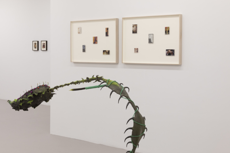 company gallery installation