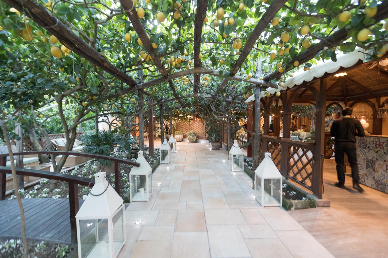 da paolino restaurant in capri, with large overhanging trellis full of lemons