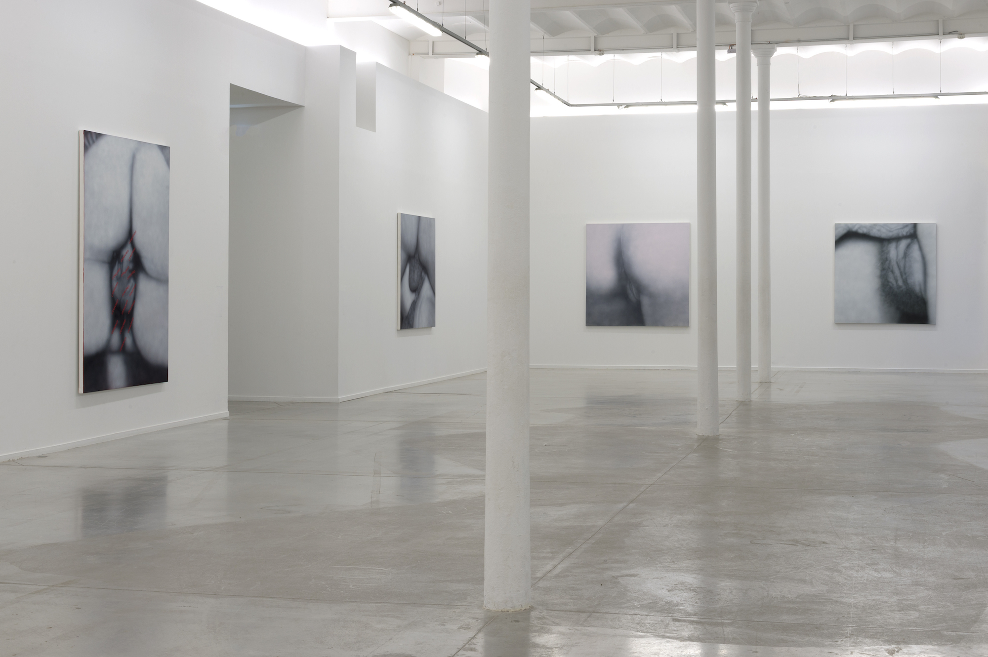 installation view of betty tompkins at moco of 4 photos of black and white up close sexual acts