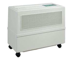 White B500